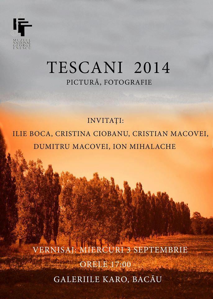 tabara de pictura de la tescani 2014